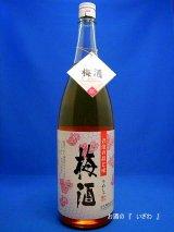 【限定品】さつま白玉 彩煌の梅酒(さいこうのうめしゅ) 1800ml瓶 鹿児島県 白玉醸造