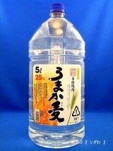本格むぎ焼酎 うまか麦 25度 5000mlペットボトル 鹿児島県 若松酒造